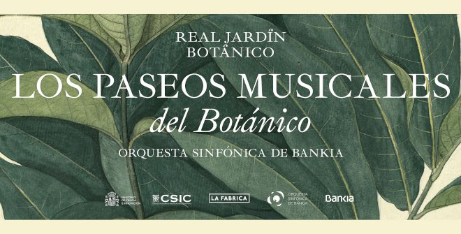 paseos_musicales